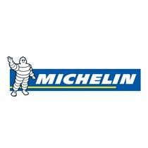 Recanvis MICHELIN