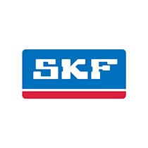 Recanvis SKF
